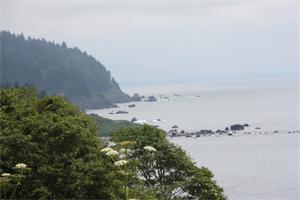 SL California Shore