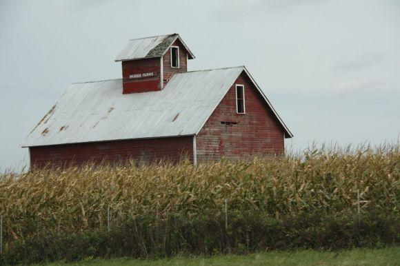Barn Picture Favorite