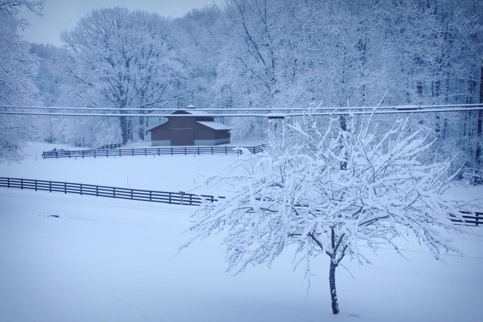 Jan 2014 Snow sm