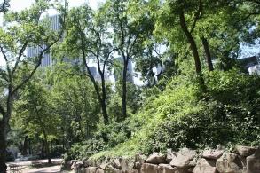 NYC - Wrapup (7)